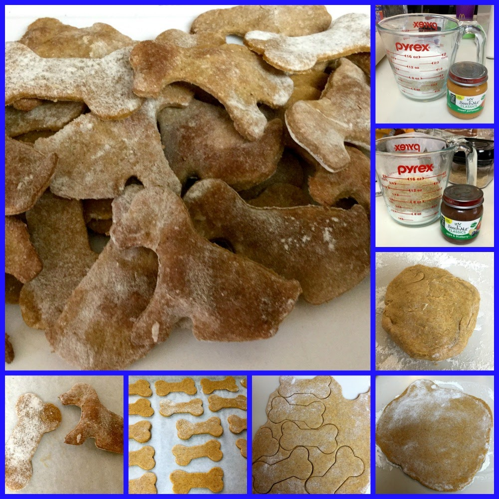 DIY Dog Treats – Healthy, Inexpensive, Easy!