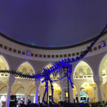 Dubai Mall - Free & Not So Free Things To Do With Kids