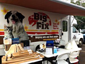 The Big Fix – Sterilizing Your Pet