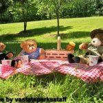 Teddy Bear Picnic Party Ideas