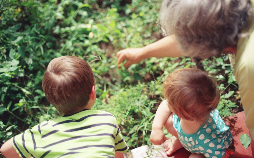 Why Is A Road Trip An Ideal Way To Enjoy Your Grandchildren This Summer?