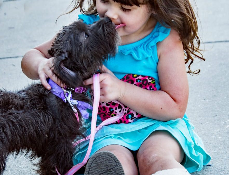 Should You Get Your Kids a Dog for Their Birthday This Year? 5 Considerations to Make