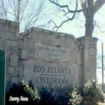 A Great Afternoon at Zoo Atlanta!
