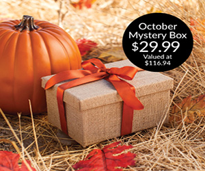 Cricut's October Mystery Box is Here!