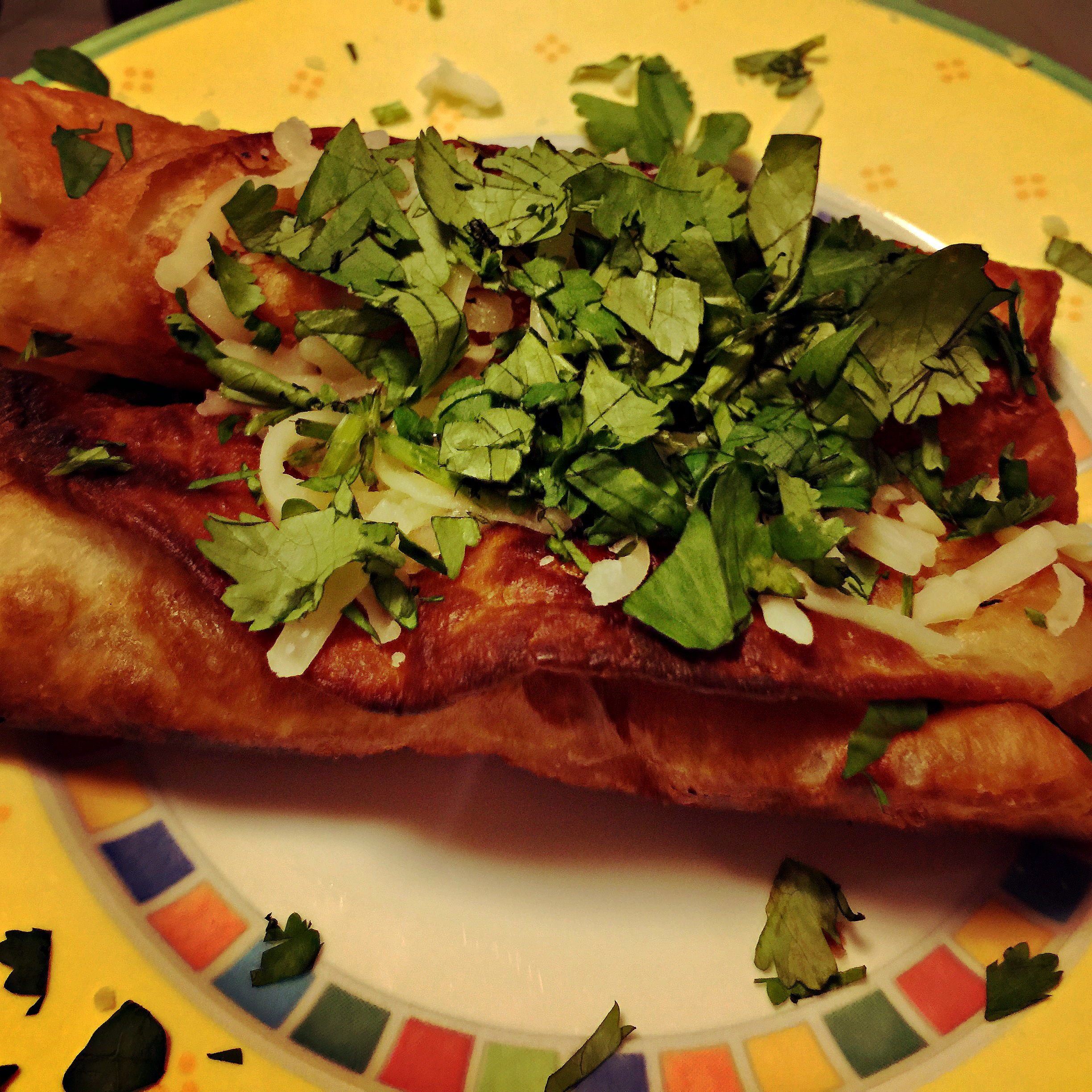 Dion's Steak Flautas – Very Delicious!