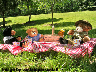 Teddy Bear Picnic Party Ideas