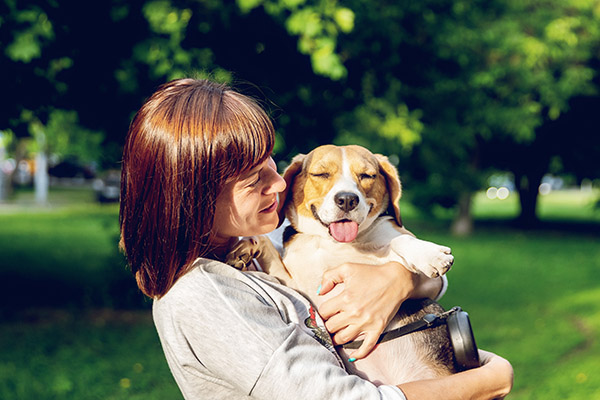 5 Reasons To Welcome A Dog Into Your Family