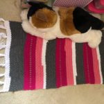 Crocheted Rug - Free Pattern