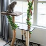 How to Make a DIY Cat Tree From a Real Tree!